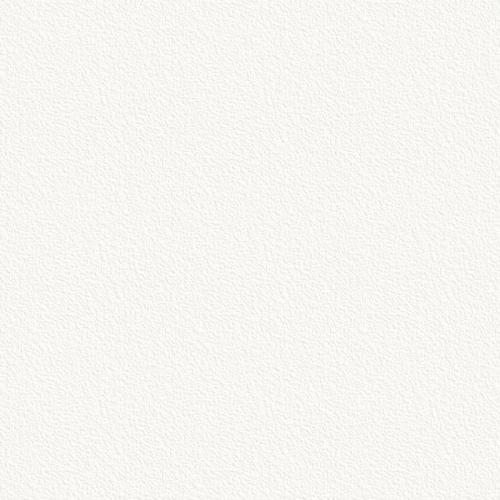 W980-SТ2 Платиновый белый